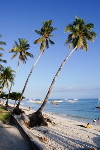 Enjoying Paradise - Tips to Avoid Travel Illness
