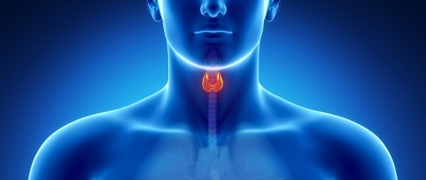 thyroid-health