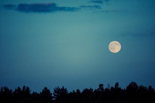 sky-clouds-trees-moon-medium